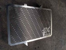 CB(R)650F Radiator Guard